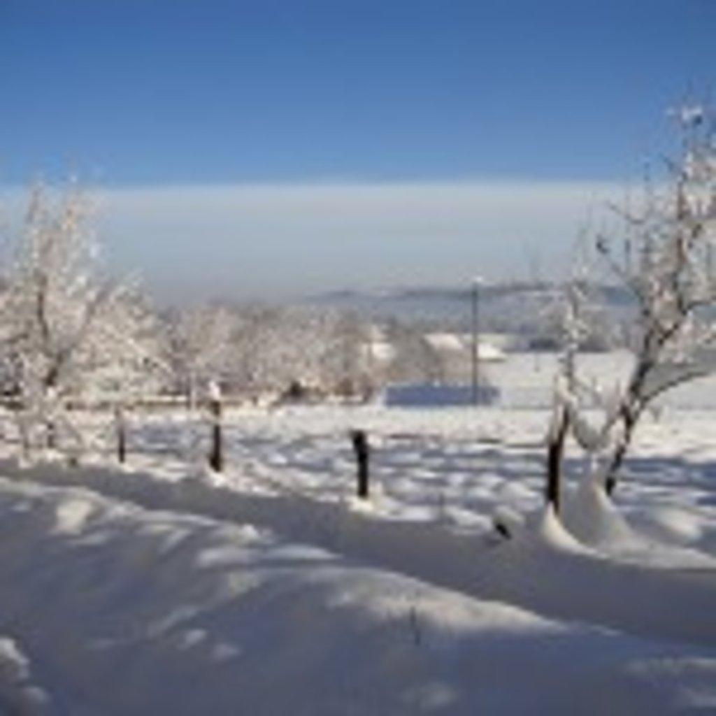 біля-батьківської-хати-взимку-2