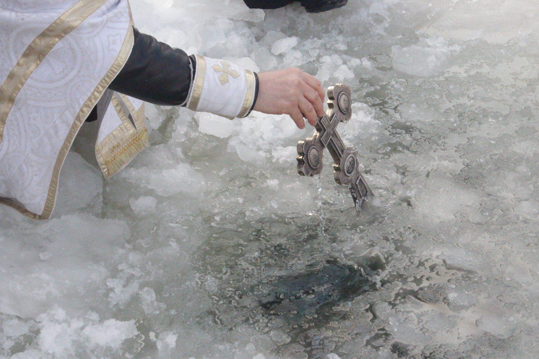 животное картинки освящение воды на крещение научная фантастика поднялась