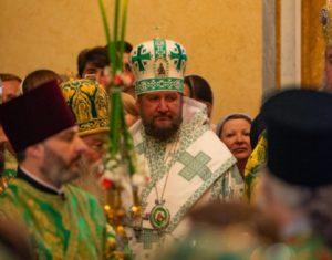 Ми не знаємо інших Помісних Церков в Україні, крім Церкви, яку очолює Блаженніший Митрополит Онуфрій — ієрарх Сербської Церкви