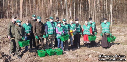 Ніжинська та Тернопільська єпархії УПЦ взяли участь в акціях з висадки лісів