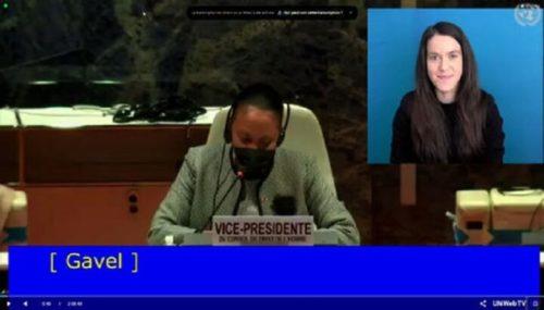В ООН розповіли про порушення прав парафій УПЦ через прийняття антицерковного закону про перейменування