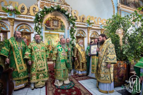 Блаженніший Митрополит Онуфрій очолив прославлення святих в Олександрії (+фото, відео)